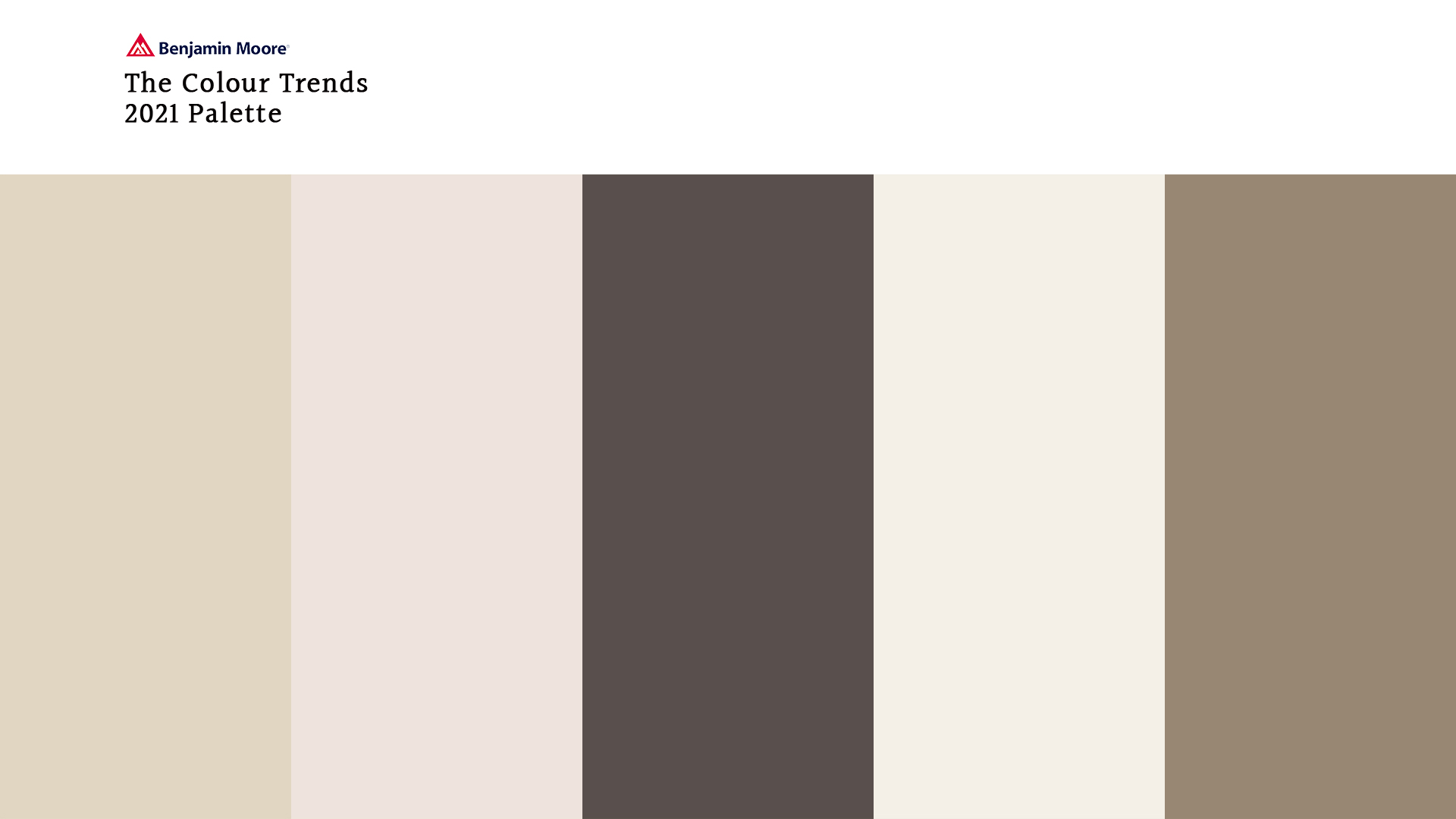 Colour of the Year Paired with ERTH's Stone Veneer | Erth Coverings